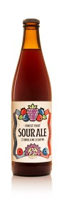Piwo Trzech Kumpli Sour Ale Forest Fruit 0,5 but